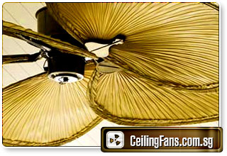 Luxury Ceiling Fan