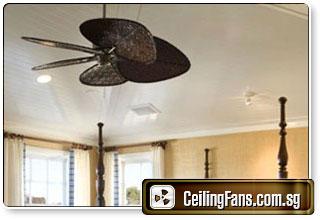 Modern Ceiling Fan
